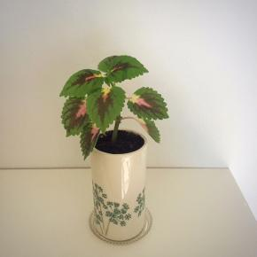 Paletblad plante i keramik (som måler ca. 13 x 7 cm.)  Er sund og i god vækst, kan blive lige så stor eller større, som billede 5. (Sælges ikke)  Fast pris på 35 kr. - Pynte plastic underskål kan tilkøbes for 15 kr. ekstra (ca. 8,5 i diameter - billede 4)  Sender og bytter ikke.  Annoncen bliver slettet når solgt, så ingen grund til at spørge om dette.