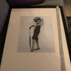 Flot billede af skønne Audrey Hepburn 53x43