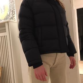 Uniqlo jakke