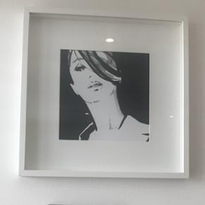 Cadre, blanc, 50x50 cm Cadre mural + image numéro deux, vous pouvez changer entre eux.  Pour plus de détails et pour envoyer plus de photos / s'il vous plaît contacter avec moi.  Cadre: Panneau de fibres de bois, Feuille décor Protection de face: Polystyrène Passe-partout: papier