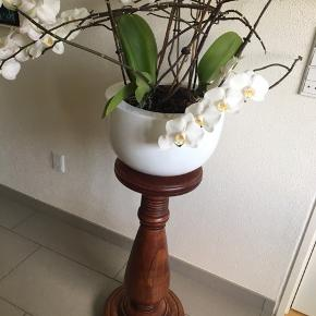 Blomsteropsats H: 70 cm Blomsten er ikke til salg🌸