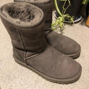 Fede ugg boots, kun brugt ganske få gange. Se billeder for stand.   Støvlen er 18cm høj  UGG Classic short II nypris 1899kr