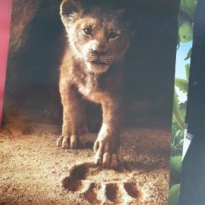 Løvernes konge🦁 Plakat fra Nordisk Film Biograf Esbjerg (Den gamle på Gl.Vardevej) Str. ca 70×100cm