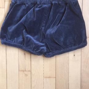 Helt nye shorts fra pompdelux, kun prøvet på. Fejler absolut intet. Fra røg og dyrefrit hjem.