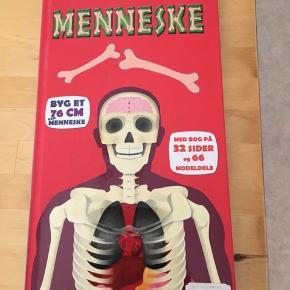 Sælger denne børnebog som handler om menneskekroppen og hvordan de forskellige ting fungerer. Desværre er skelettet ikke med, da det er blevet smidt ud, eller bogen næsten som ny. Kommer fra et ikke ryger hjem. Kan afhentes i 2990 Nivå eller sendes mod betaling.