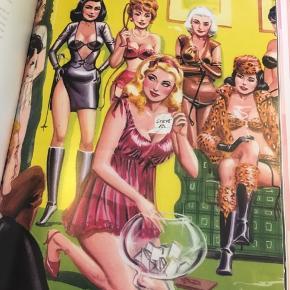 Agent provocateur a celebration of femininity, Joseph Corré and Serena Rees, Carlton 192 sider, 1999. 50kr Kan hentes Kbh V eller sendes for 38kr DAO
