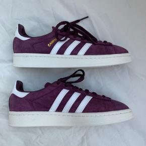 Flotte lilla Adidas campus sneakers i str 36 (22cm)  De er et fejlkøb og er aldrig brugt.