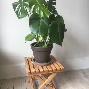 Lille træ taburet/blomsterstand, sød at stille ting på og med maling kan den altid piftes op. Alm brugsspor/naturlig patina. (Sælges u. plante) Højde: 32 cm Bredde: 35 cm •Afhentes på Vesterbro, Enghavevej