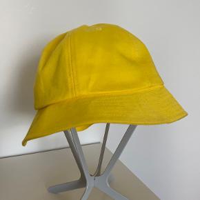 Envii hat & hue