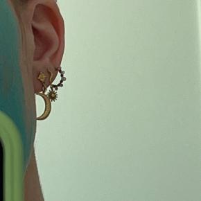 Maanesten ørering