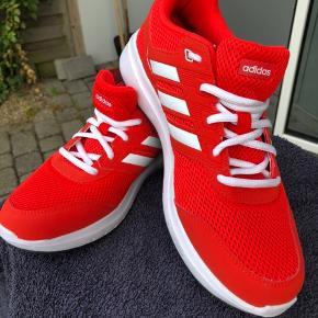 Fede Orange/røde Adidas str 42....jeg bruger normalt str 41 og de er lidt små i størrelsen. Passer mig.  Men jeg har aldrig gået med dem.... Da jeg desværre har været syg et stykke tid, så synes jeg de virkelig gør opmærksom på mine meget hvide ben.... griner... :-)