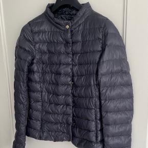 Herno jakke