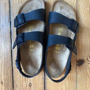 Helt nye Birkenstock sandaler til mænd. De er modellen Milano. Skoene er en størrelse 45 til smalle fødder. Sælges da skoene ved en fejl er købt til smalle fødder og boksen til skoene er smidt ud så man derfor ikke kan returnere dem. De er blevet brugt indenfor og der er derfor ingen skader på sandalerne. De koster 750 fra ny, men vil gerne forhandle om prisen. Jeg har stadig kvitteringen. Kan mødes i København eller sendes.
