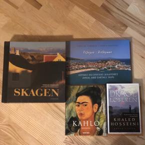 4 dejlige bøger , bl.a stor fortælling fra Skagen og rejse bog til Kreta. Den fantastiske bog Drageløberen og ikke at forglemme den smukke KAHLO.  GIV NOGLE GODE BUD.