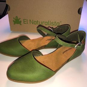 El Naturalista Flats