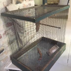 Solidt ældre fuglebur i net og træ. Metalbunden trækkes ud af en lem når den skal rengøres. Indgangslåge og foder/badlåge i siden. Malingen på ydersiden er slidt men ellers er buret i rimelig god stand. 37x57x60cm. 150kr Kan hentes kbh v