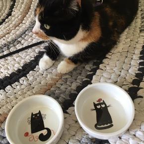 ⭐️ 2 stk søde katte madskåle ⭐️ Lavet i porcelæn  ⭐️ 11 cm i diameter ⭐️ Kan leveres i Esbjerg for 10 kr