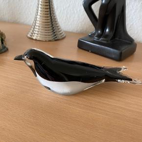 Sød fugl