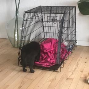 Hunde bur