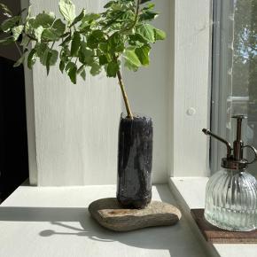 Smuk sydafrikansk plante (plectranthus ernstii) med lilla blomster 🌸 meget nem plante som kan trimmes ligesom et bonsai tre 🌳 skal nok omplantes 😉   *Kan ikke sendes med posten, men kan bringes ud i Københavns området!