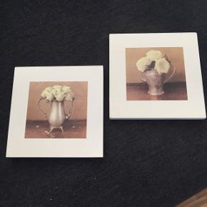 Billeder str 16,6•16,6 cm, har aldrig været oppe at hænge. Prisen samlet 60 kr incl porto med dao