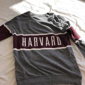 Trøje med Harvard logo Aldrig brugt Nypris 250 kr