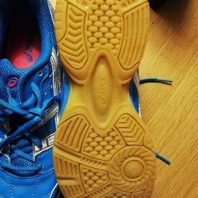ASICS indendørs sko