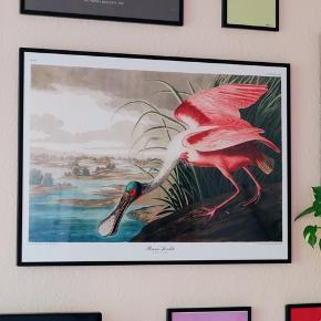Plakat fra The Dybdahl Co.  Måler 50 x 70 cm.  Er stort set som ny.  Nypris 375kr, sælges for 200kr.