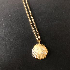 62cm muslinge halskæde  18k guldbelagt rustfrit stål