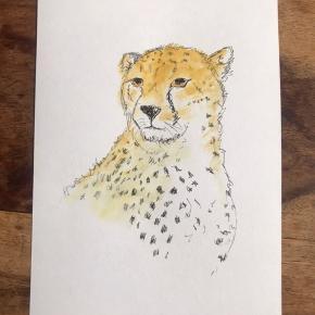 Akvarel 14.8 x 21 cm (Standard A5 mål) Gepard, dyr