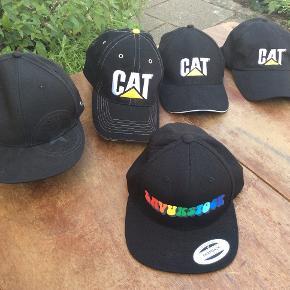 Den sorte Converse cap er kun brugt en gang. Byd gerne på den, og de andre på foto er kun prøvet er som nye. Den ene Cat er der lidt iret på messingspænde, synes kun det giver lidt råhed og sjæl, ikke brugt, se foto. pr. stk. 60 pp.