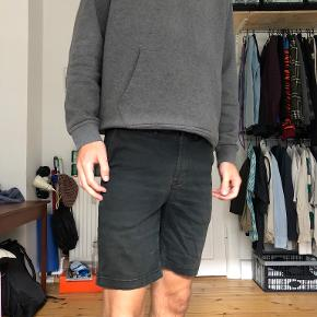 HUF shorts