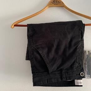 Lindbergh shorts