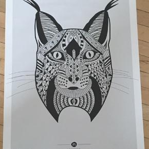 Tarik Arnautovic-plakat. 50x70. Kan afhentes på Nørrebro.