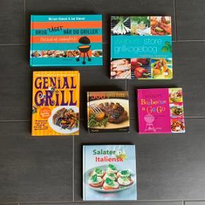 Bøger med opskrifter / grill kogebøger / grillbøger sælges for 25 kr. pr. stk. Kan sendes for 39 eller 53 kr. afhængig af vægt/antal. Bøgerne er som nye:  Brug låget når du griller af Miriam & Jan Glæsel Webers store grillkogebog Genial grill af Tina Scheftelowitz 500 grill hits Webers Barbecue a Go Go Salater på italiensk