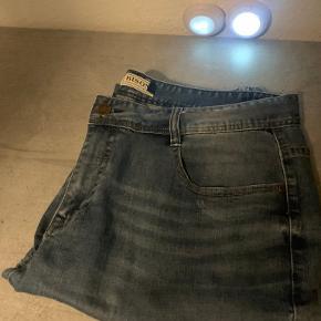 Bison shorts