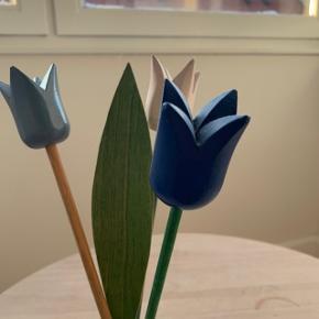 Træ-tulipaner fra Holland 🤩