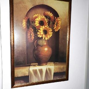 Smuk indrammet tryk med solsikker  80x50 cm  Kan hentes i Ringsted eller Karlslunde