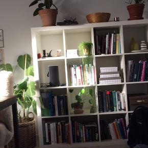 Den har slidtage fra potteplanter og generel brug i de diverse rum. Køber henter på adressen  Modellen hedder kallax 👌🏼