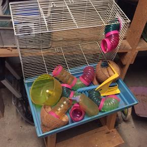 Hamsterbur med tilbehør. Skal bare vasken, ellers god som ny