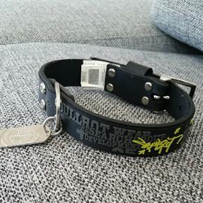 Bullrot wear halsbånd til hunde. Aldrig brugt. Ægte og med hologram. Kan sendes