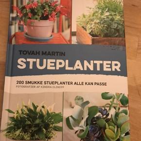 Bog om stueplanter