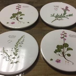 Flora Danica køkkenudstyr