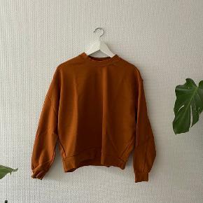 Huge sweater fra Weekday i smuk brændt orange farve ✨