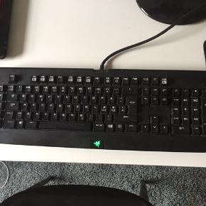 Razer keyboard fejler intet