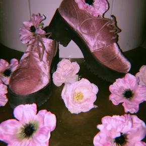 💗Super cute pink/rosa velour oxford sko med platform. Har brugt dem et par gange, så der er lidt skrab på siden af tåen, men ellers er de i rigtig god stand.🥰🎀 Byd gerne!