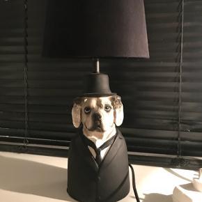 Hunde natlampe, lampe. Men få skræmmer på indersiden af skærmen
