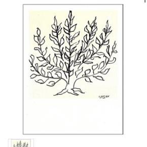 Str. 68x85