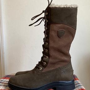 Ariat Andre sko & støvler