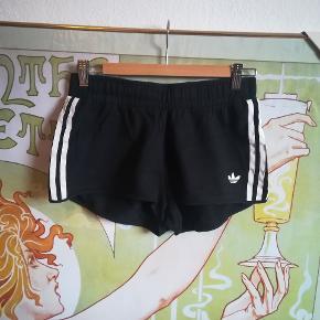 Sorte bomulds shorts fra Adidas Tror de er en str M